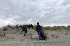 beachclean4