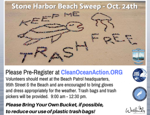 2020 Fall Beach Sweep